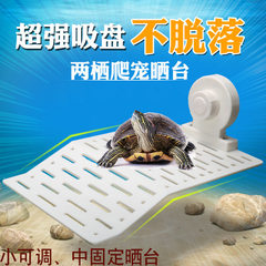 Aquarium climbing platform turtle platform no Fixed mid deck