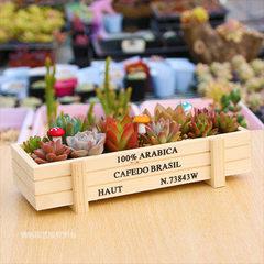 多肉木花盆长方形做旧木盒zakka多肉植物组合木质花盆 原木色 22.5*8.5*4.5