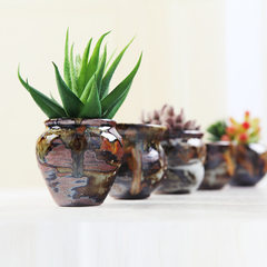 Multi-meat flowerpot ceramic small control shape m E money