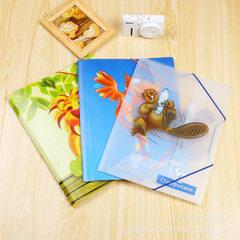 Customized PP folder A4/ elastic PP folder/elastic a4