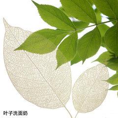 Leaf washing face milk OEM processing gentle clean 1000