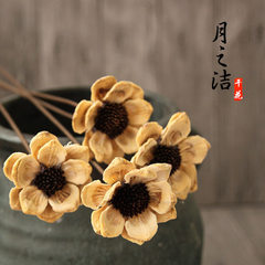 Dry flower wholesale smile eternal life flower hom [chuckles] primary colors