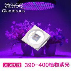 3030灯珠紫光390-400nm植物灯珠3030植物生长灯LED1WUV植物光源 390-400nm