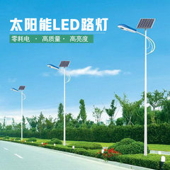 Rural project solar street lamp integration 30W ru Solar energy integrated street lamp