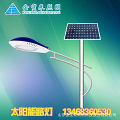 2544 lamp height 3.0m LED simulation lamp tree LED Height: 3 m