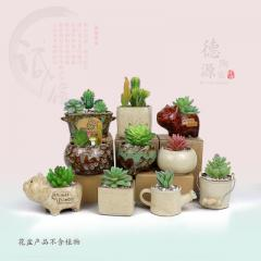 SBZH kiln ceramic flowerpot, zakka many-meat flowe 14-10 small