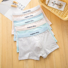 Children`s underwear wholesale boys in large and s Color mixing