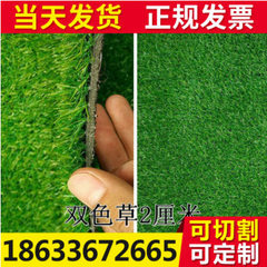Imitation artificial lawn carpet kindergarten lawn Spring grass encryption dual color rainproof anti-exposure 40mm