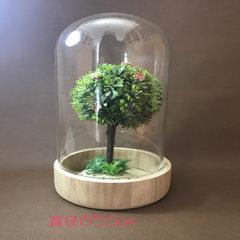 微景观蛋糕 玻璃罩永生花家居摆饰LED干花透明罩厂家直销促销DIY 玻璃罩