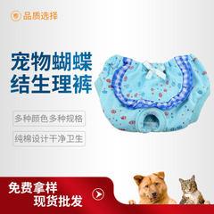 Many pet male dog urine not wet teddy golden hair  blue s