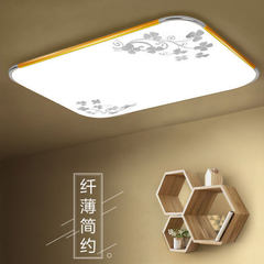 LED ceiling lamp acrylic aluminum living room lamp 30*30 cm white 24 watts