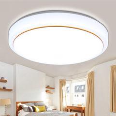 Led ceiling lamp modern simple acrylic living room 20 cm white light 12w