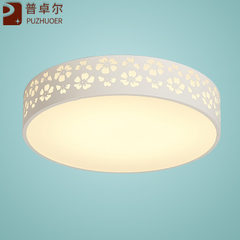 Modern simple led ceiling lamp double color led ir Diameter 380mm monochrome 24W white LED