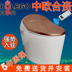 Gaolaigao intelligent toilet is a thermal OEM elec Elegant and ivory