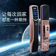 Fingerprint Intelligent Lock